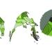 03-03-motocross-design