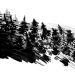 04-ac-layout-07